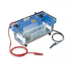 5 THINGS YOU SHOULD KNOW ABOUT ELECTROPHORESIS SYSTEM