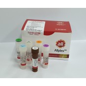 PCR Based Kits