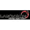 Labovision