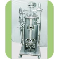 Pilot Scale Fermentor