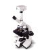 LABOVISION AXL Dual View Monocular Compound Microscope